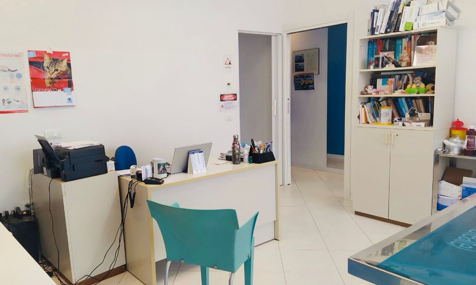 Sala visite ambulatorio veterinario Lucia Vaccaro Albignasego